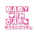 BABY IN CAR WORD2007