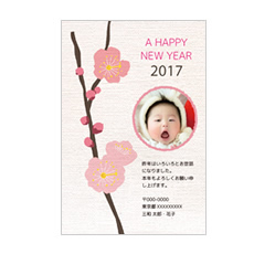 A HAPPY NEW YEAR 2017 うめ(写真用)